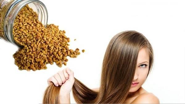وصفة الحلبة لعلاج مشاكل الشعر